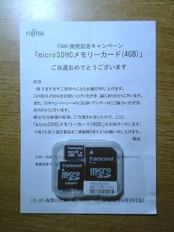 f906i_microsdhc.jpg