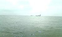 fishing_kisu.jpg